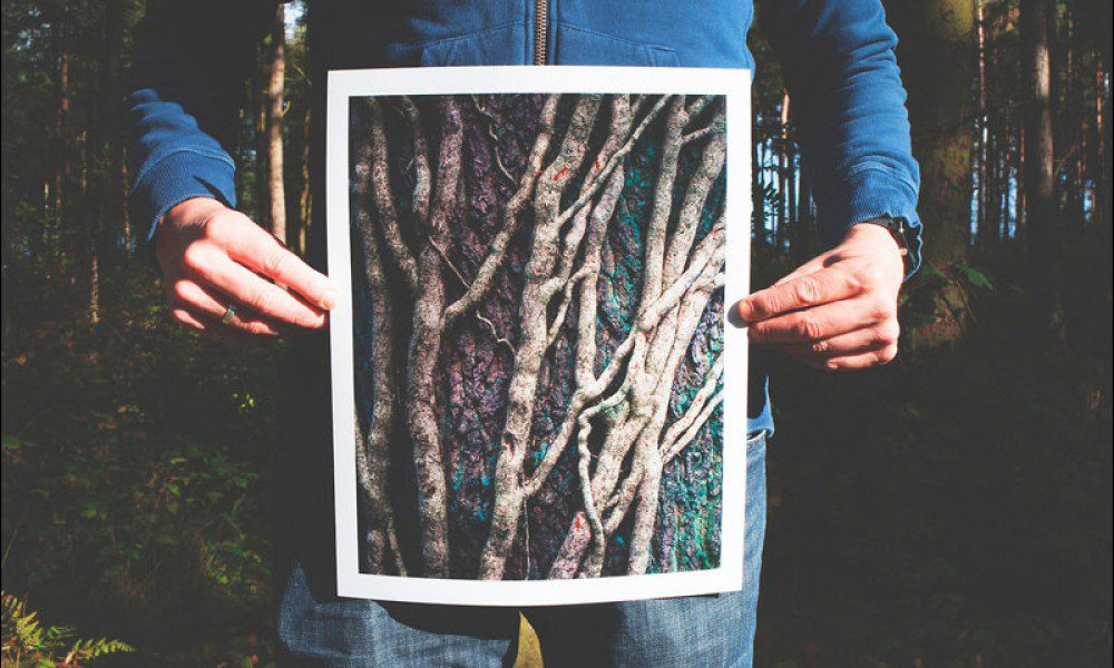 Man holding photo of branches while standing in the woods