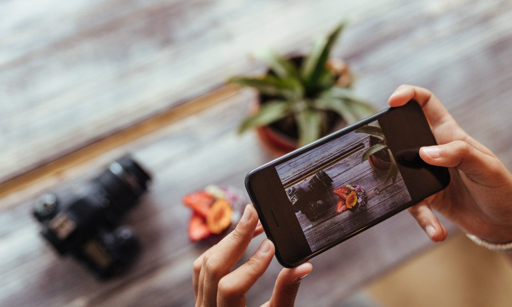 person using a phone to photograph a camera and plant